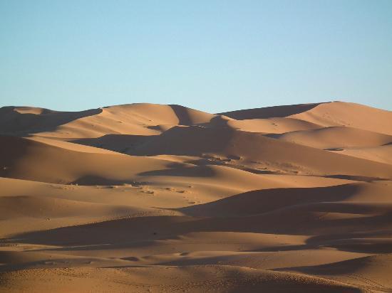 Auberge Camping Ocean Des Dunes: En route vers la grande dune.