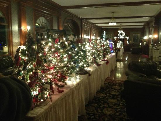 Stanley Hotel: Christmas Trees available as part of a fund raising project