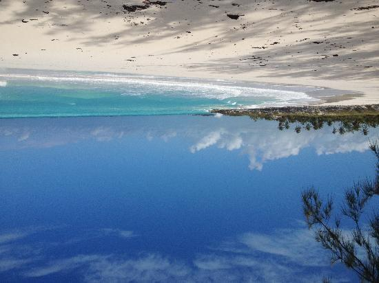 Coral Gardens : Forbes beach