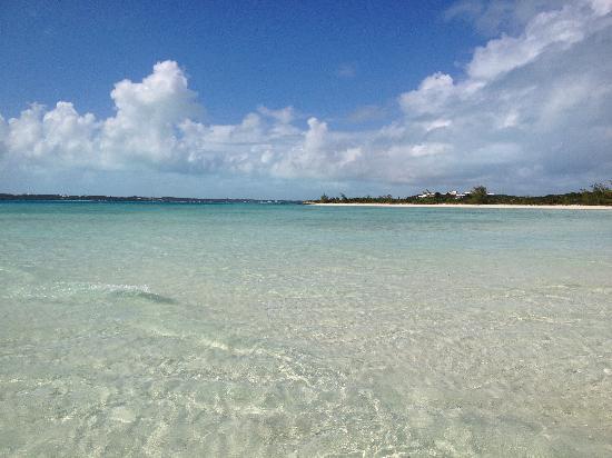 Coral Gardens : Stocking island