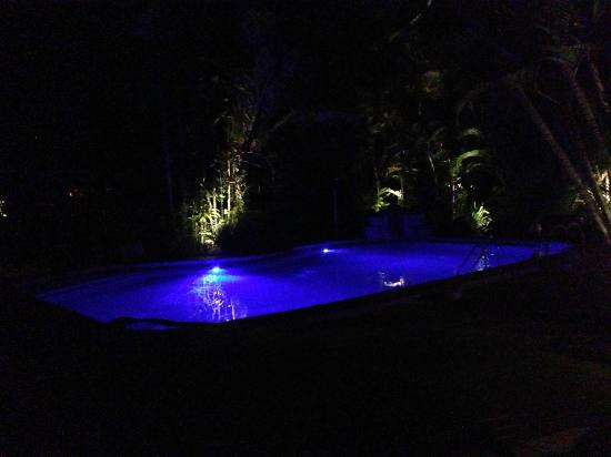 Pink Flamingo: Pool at night