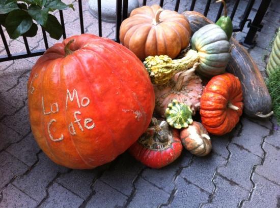 Harvest Time at La Mo's Cafe