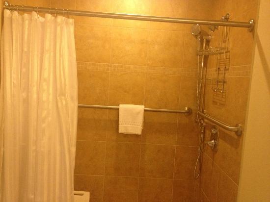 The Daniel: Wheelchair and Handicap Accessible Bathroom - King Room