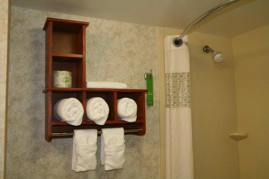 Hampton Inn Gainesville: Guest Bathroom
