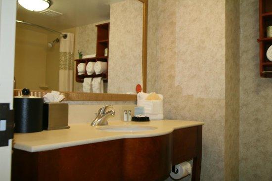 Hampton Inn Gainesville : Guest Bathroom
