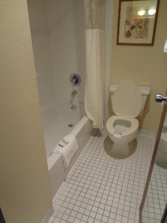Baymont Inn & Suites Memphis East: bathroom