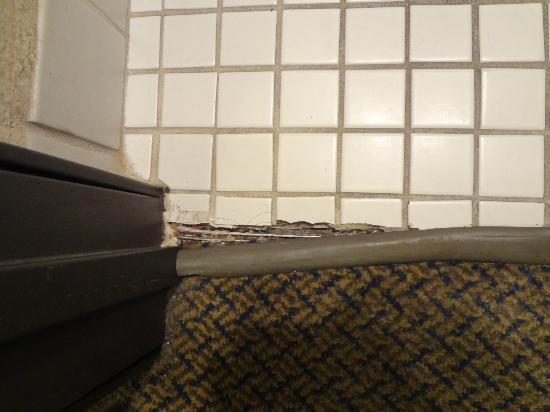 Baymont Inn & Suites Memphis East: door threshold