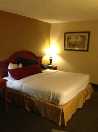 Holiday Isle Oceanfront Resort: King Size bed