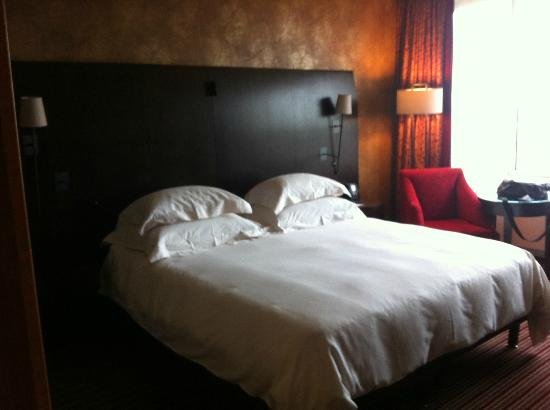 Hilton Amsterdam : Executive Twin Room