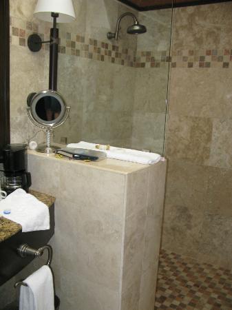 هوتل كامينو ريال أنتيجوا: Shower 