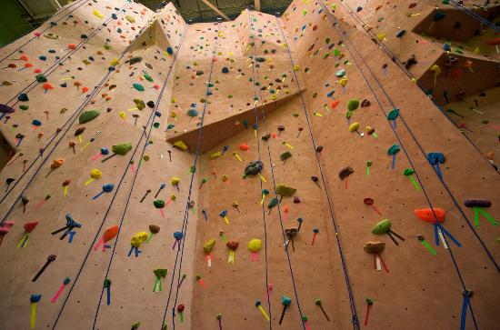 Earth Treks Climbing Center: bottom view of one of the many climbing walls