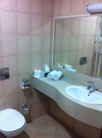 Sympozjum Hotel: room