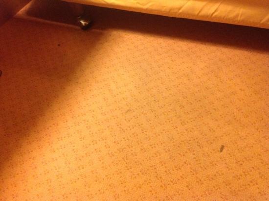 Hotel Grillo: condizioni moquette pavimento