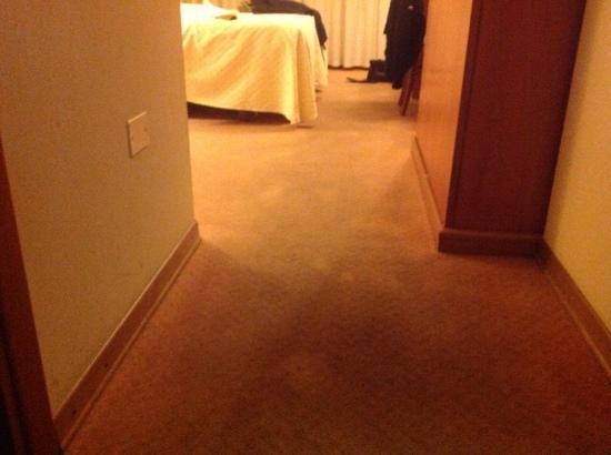 Hotel Grillo: condizioni moquette pavimento 2