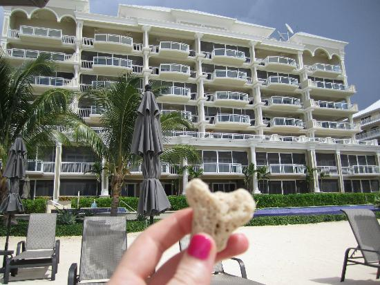 Beachcomber Grand Cayman: love