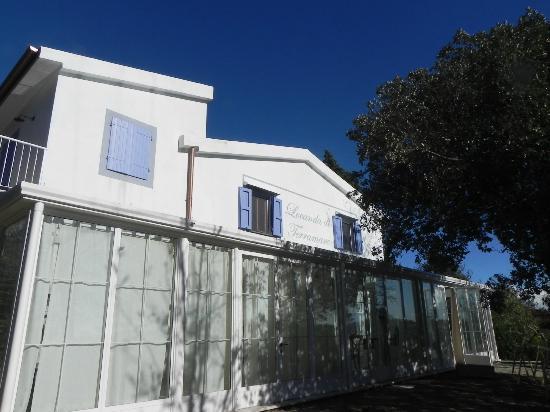 La Credenza Di Picasso Livorno : Locanda di terramare naturist b in tuscany ranch reviews