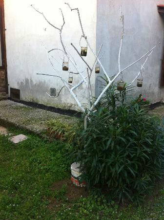 Giugliano in Campania, Italy: l'albero porta candele?