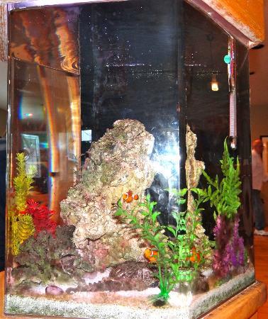 Big Wave Cafe: Aquarium in center of the restaurant