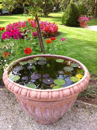Le Petit Manoir des Bruyeres : a corner of the grounds