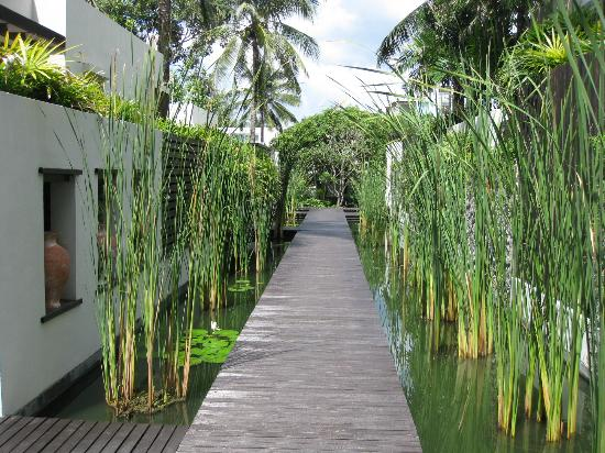 Aleenta Phuket Resort & Spa: a teak walkway leading from the spa by some beach villa rooms to the main resort grounds
