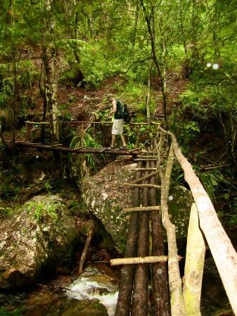 Hidden Valley Inn: Hiking trail bridges