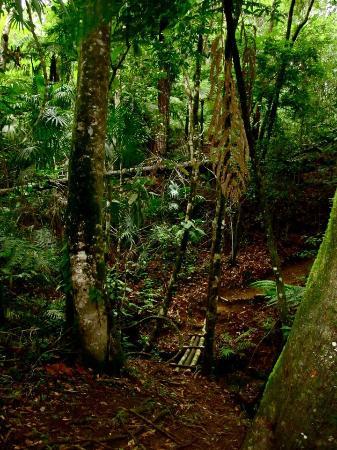 هيدين فالي إن آند ريزيرف: Hiking Trails 