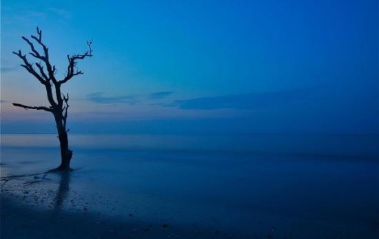 Botany Bay Ecotours : At dawn.....