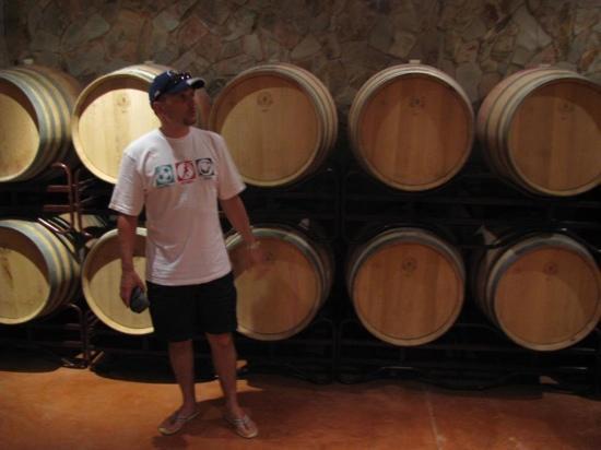 Quinta dos Vales: the cellar