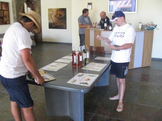 Quinta dos Vales: wine testing