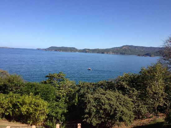 Paradise Flamingo Beach: Terrace view