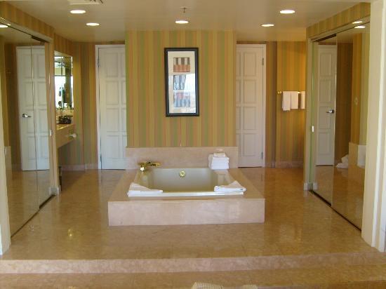 Bath/Jacuzzi Area