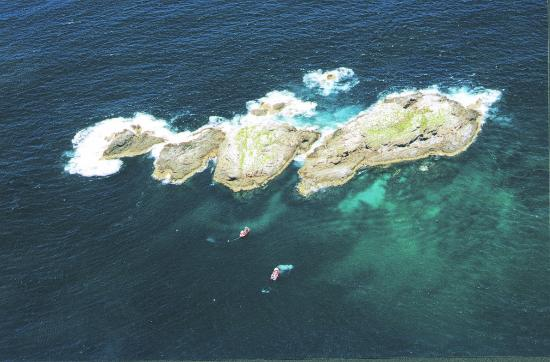 Aerial view of julian rocks marine park picture of byron - Dive byron bay ...