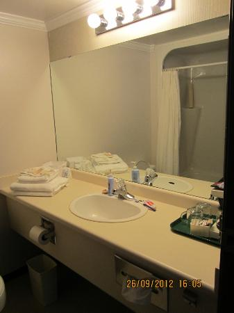 Highliner Plaza Hotel & Conference Centre: Bathroom