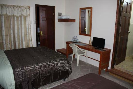 Hotel Villa du Capitaine Bed and Breakfast : TV wi-fi internet, A/C