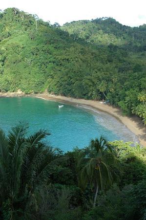 Englishman's Bay : Beautiful bay!
