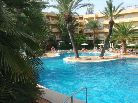 Viva Palmanova & Spa: Pool