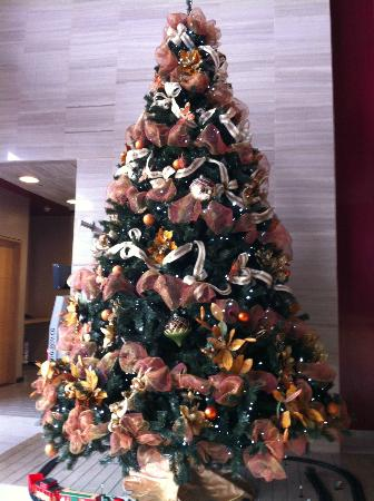 Sonesta Hotel Bogota: Christmas Tree in lobby.