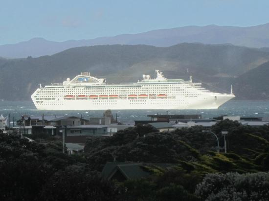 Acorns Wellington Bed and Breakfast: Watch the passing parade of ships