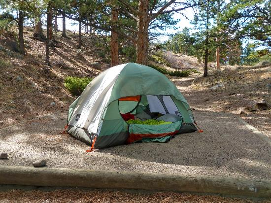 Moraine Park Campground: One of many campsites