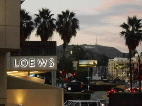 pool view room picture of loews hollywood hotel los. Black Bedroom Furniture Sets. Home Design Ideas