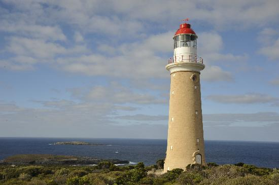 Cape du Couedic Lighthouse Keepers Heritage Accommodation : The lighthouse