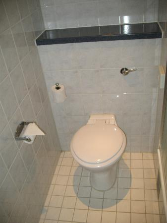 Holiday Inn Express London - Park Royal: toilet