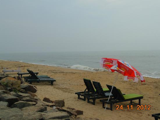 Cherai Beach Resorts: beach view