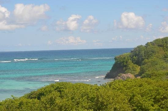 Petit St. Vincent Resort: Incredible views everywhere!