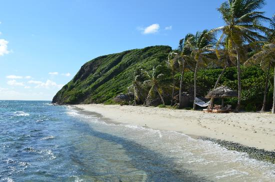 Petit St. Vincent Resort : Solitude on the white sand beaches