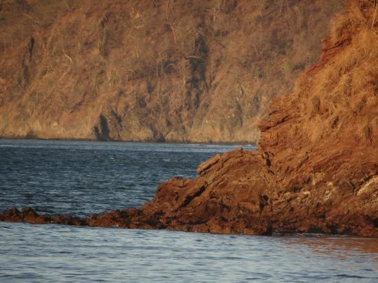 The Westin Golf Resort & Spa, Playa Conchal - An All-Inclusive Resort: Beach view