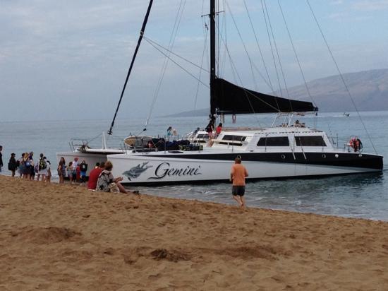 The Westin Maui Resort & Spa: Excursion on catamaran, behind Westin