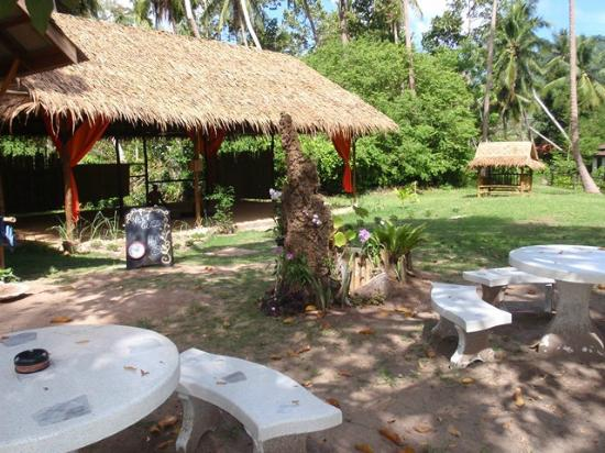 Grounded Koh Tao's Wellbeing Center: the garden and the sala