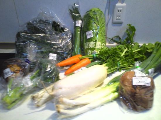 Michi-no-Eki Furari Tomiyama: 購入した野菜たち