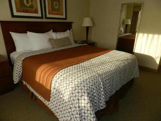 Embassy Suites by Hilton Denver - Tech Center: Bedroom